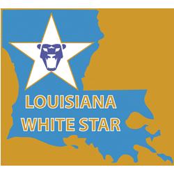 LA White Star Soccer Academy